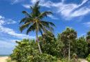 Bill Baggs State Park na Key Biscayne